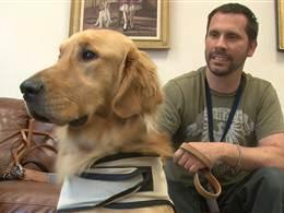Companion dogs help veterans heal